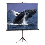 View Tripod Screens (5)